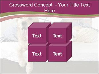 Golden retriever PowerPoint Template - Slide 39