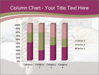 Golden retriever PowerPoint Template - Slide 50