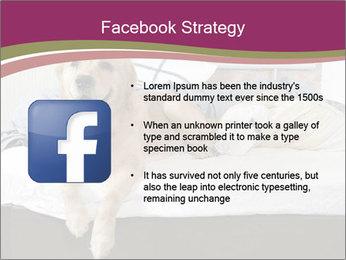 Golden retriever PowerPoint Template - Slide 6