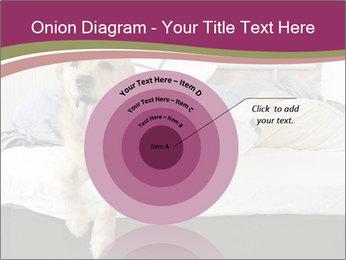 Golden retriever PowerPoint Template - Slide 61