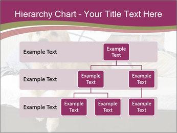Golden retriever PowerPoint Templates - Slide 67