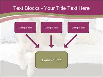 Golden retriever PowerPoint Template - Slide 70
