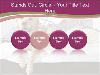 Golden retriever PowerPoint Template - Slide 76