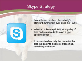 Golden retriever PowerPoint Template - Slide 8