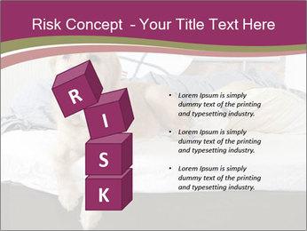 Golden retriever PowerPoint Template - Slide 81