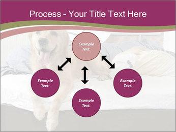 Golden retriever PowerPoint Template - Slide 91