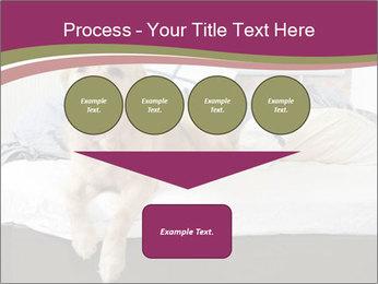 Golden retriever PowerPoint Template - Slide 93