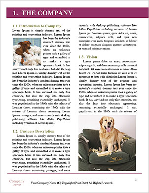 0000092153 Word Template - Page 3
