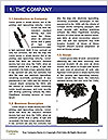 0000092159 Word Template - Page 3