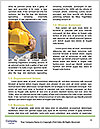 0000092160 Word Template - Page 4