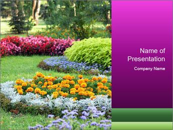 Blossoming colorful flowerbeds in summer city park PowerPoint Template - Slide 1
