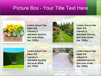 Blossoming colorful flowerbeds in summer city park PowerPoint Template - Slide 14