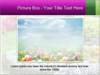 Blossoming colorful flowerbeds in summer city park PowerPoint Template - Slide 15