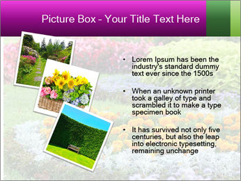 Blossoming colorful flowerbeds in summer city park PowerPoint Template - Slide 17