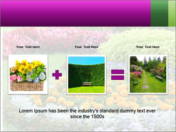 Blossoming colorful flowerbeds in summer city park PowerPoint Template - Slide 22