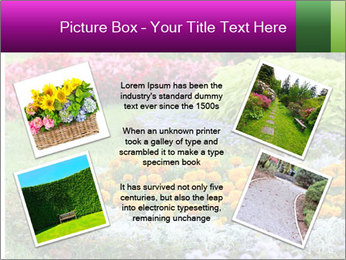 Blossoming colorful flowerbeds in summer city park PowerPoint Template - Slide 24