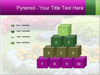 Blossoming colorful flowerbeds in summer city park PowerPoint Template - Slide 31