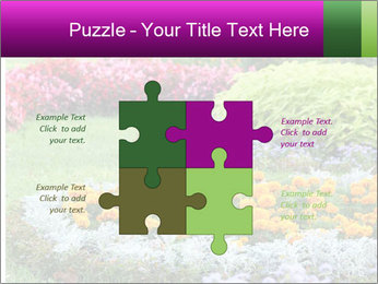 Blossoming colorful flowerbeds in summer city park PowerPoint Template - Slide 43