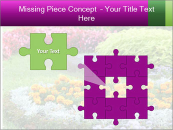 Blossoming colorful flowerbeds in summer city park PowerPoint Template - Slide 45