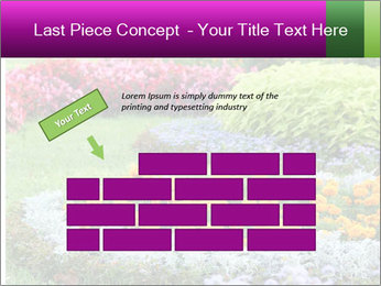Blossoming colorful flowerbeds in summer city park PowerPoint Template - Slide 46