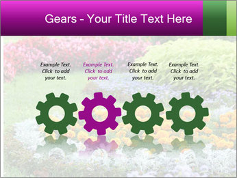 Blossoming colorful flowerbeds in summer city park PowerPoint Template - Slide 48