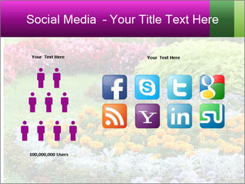 Blossoming colorful flowerbeds in summer city park PowerPoint Template - Slide 5