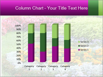 Blossoming colorful flowerbeds in summer city park PowerPoint Template - Slide 50