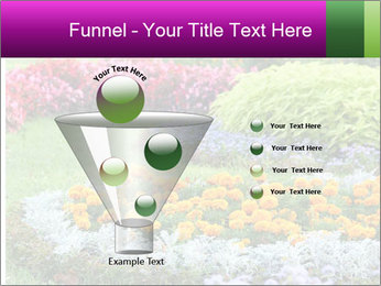 Blossoming colorful flowerbeds in summer city park PowerPoint Template - Slide 63