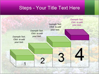 Blossoming colorful flowerbeds in summer city park PowerPoint Template - Slide 64