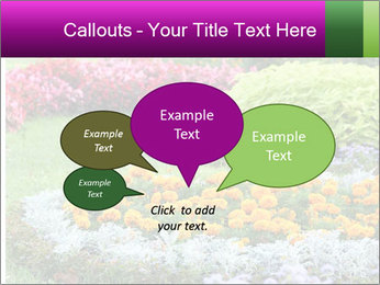 Blossoming colorful flowerbeds in summer city park PowerPoint Template - Slide 73