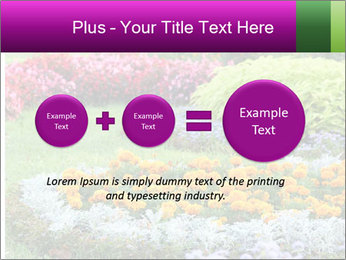 Blossoming colorful flowerbeds in summer city park PowerPoint Template - Slide 75