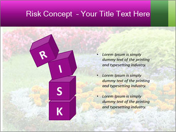 Blossoming colorful flowerbeds in summer city park PowerPoint Template - Slide 81