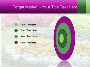 Blossoming colorful flowerbeds in summer city park PowerPoint Template - Slide 84