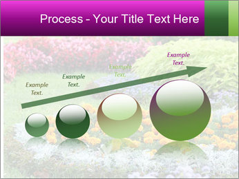 Blossoming colorful flowerbeds in summer city park PowerPoint Template - Slide 87