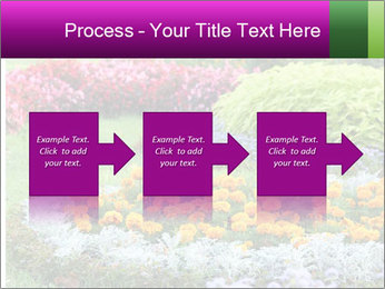 Blossoming colorful flowerbeds in summer city park PowerPoint Template - Slide 88