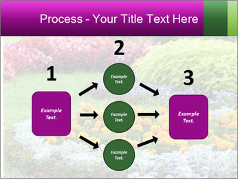 Blossoming colorful flowerbeds in summer city park PowerPoint Template - Slide 92