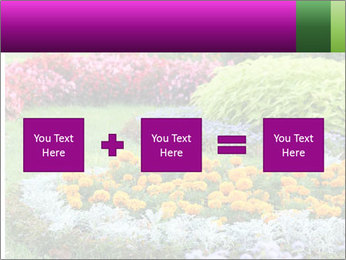 Blossoming colorful flowerbeds in summer city park PowerPoint Template - Slide 95