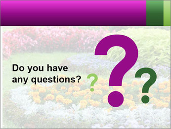 Blossoming colorful flowerbeds in summer city park PowerPoint Template - Slide 96