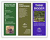 0000092168 Brochure Template