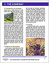 0000092168 Word Template - Page 3