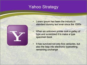 Sheep running PowerPoint Template - Slide 11