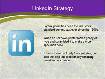 Sheep running PowerPoint Template - Slide 12