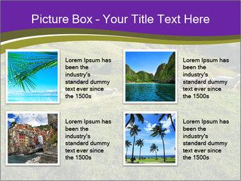 Sheep running PowerPoint Template - Slide 14