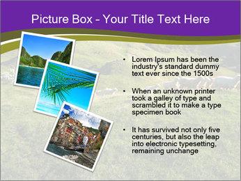 Sheep running PowerPoint Template - Slide 17