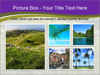 Sheep running PowerPoint Template - Slide 19