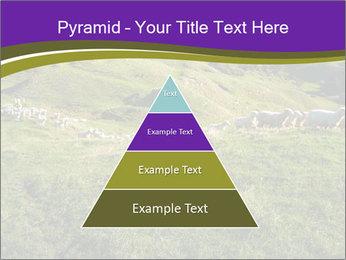 Sheep running PowerPoint Template - Slide 30