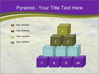 Sheep running PowerPoint Template - Slide 31