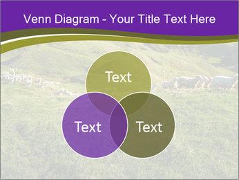 Sheep running PowerPoint Template - Slide 33
