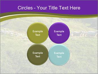 Sheep running PowerPoint Template - Slide 38