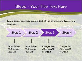 Sheep running PowerPoint Template - Slide 4